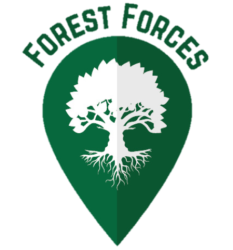 Forest Forces